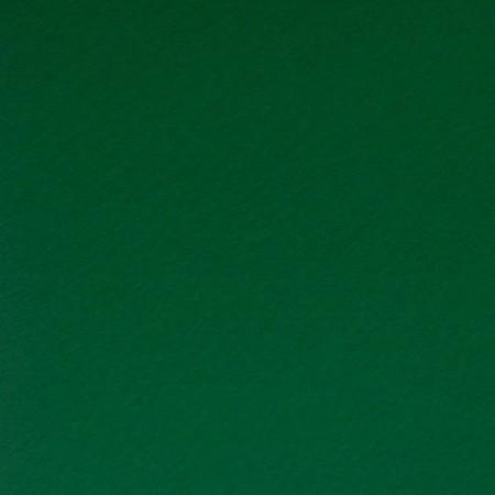 Фетр Лесной зеленый № 869